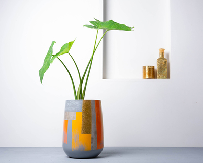 Concrete parabola planter suryaasta collection thumb